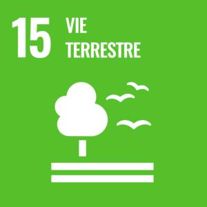 Objectif De Développement Durable 15: Vie Terrestre